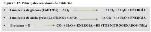 F.1.12. Reacciones oxidación