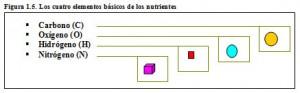 F.1.5. Cuatro elementos básicos