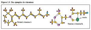 F.1.9. Vitaminas