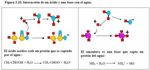 F.2.20. Interacción Ácido, Base, Agua