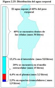 F.2.25. Distribución agua corporal