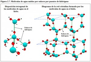 F.2.7. Moléculas Agua enlaces Hidrógeno