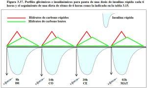 figura-3-37-perfiles-glicemicos-e-insulinemicos-dieta-1-dosis-insulina-rapica-cada-6-horas