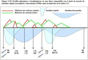 figura-3-39-perfiles-glicemicos-e-insulinemicos-dieta-2-dosis-mezcla-insulina-rapida-mas-intermedia