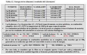 T.1.2. Energía alimentos calorímetro