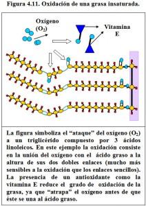 Figura 4.11. Oxidación grasa insaturada