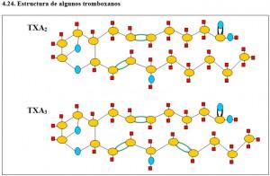 Figura 4.24. Estructura de algunos tromboxanos
