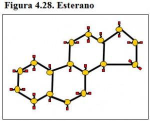 Figura 4.28. Esterano