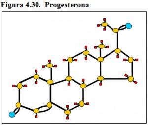 Figura 4.29. Progesterona