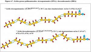 Figura 4.7. Dos ácidos grasos poliinsaturados. EPA y DHA