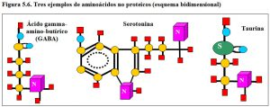 Figura 5.5. Aminoácidos no proteicos
