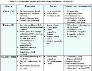 tabla-7-29-tabla-resumen-minerales